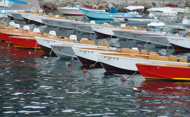 Private Jet Charter Catalina Island  California
