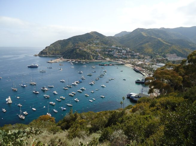 Catalina Island Air Charter